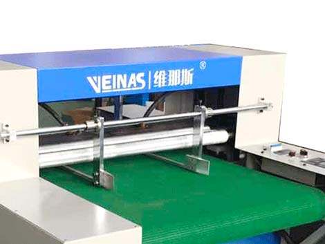 Veinas professional custom automated machines high speed for workshop-2